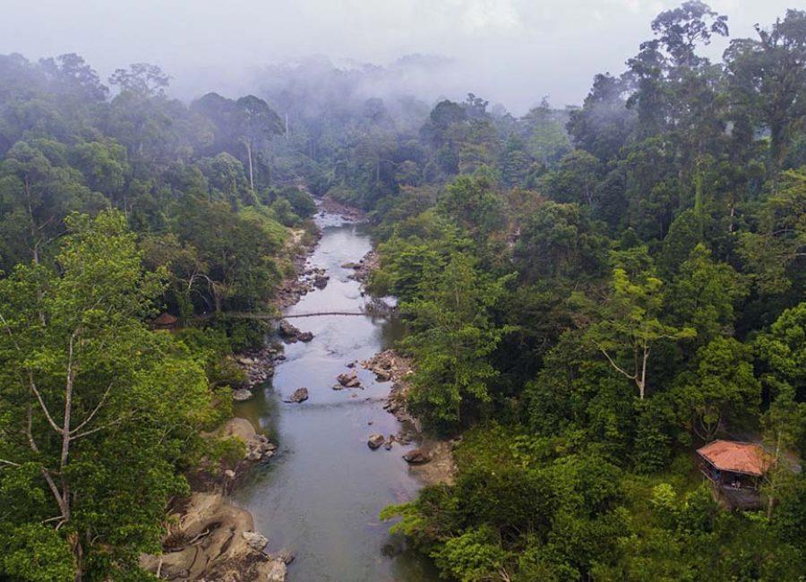 5c_Danum_valley_natural_view_amazing_borneo