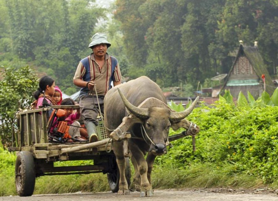7_ Karo Batak dorp Dokan (1)