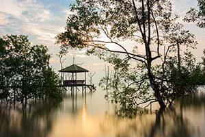 Национальный парк Бако