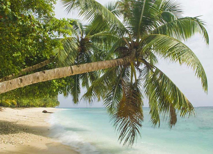 The shoreline near Katiet village, Mentawai Islands, Indonesia
