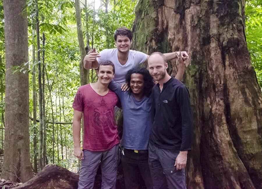 Bukit Lawang jungle