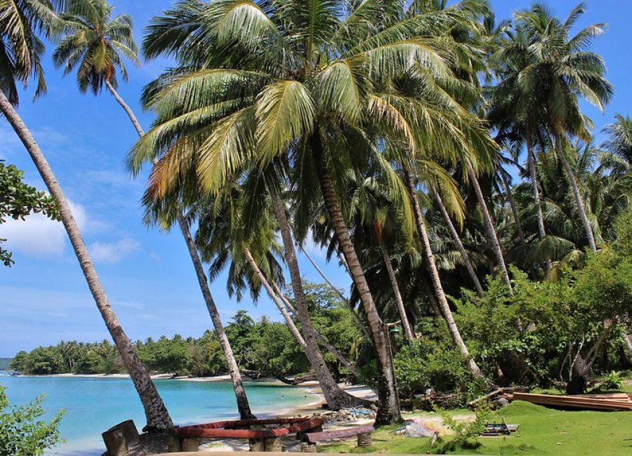 Mentawai isl