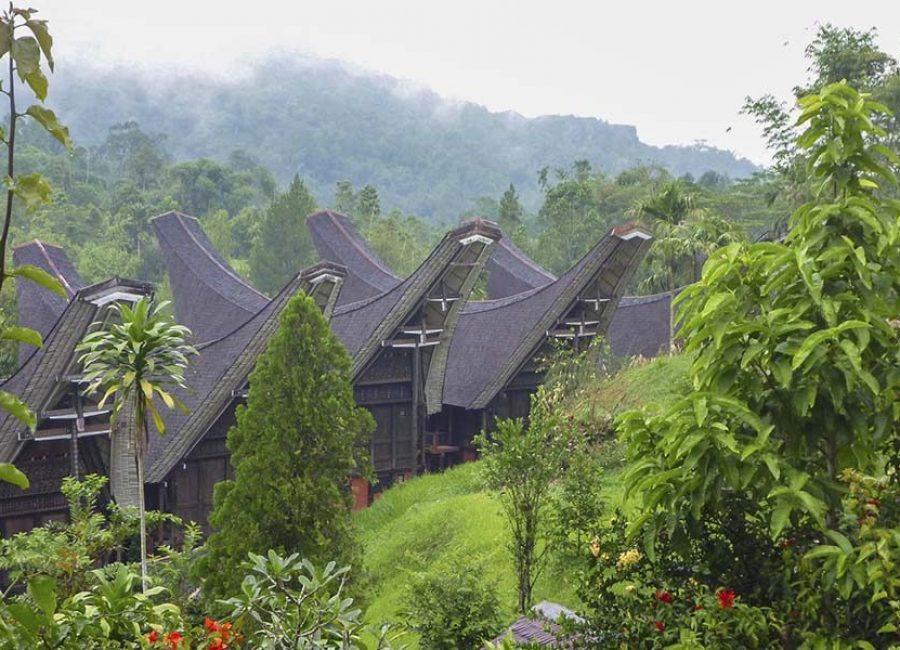 Toraja12