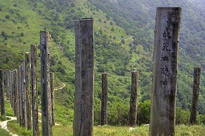 Wisdom trail копия