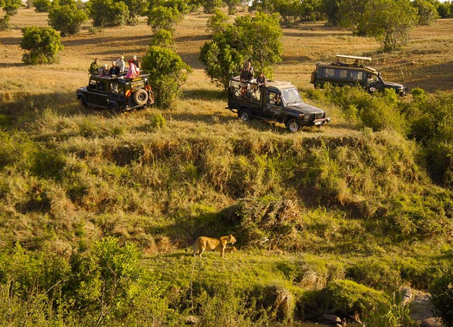 masai mara8