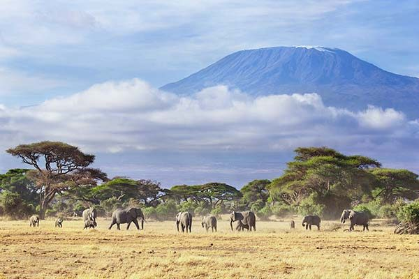 mount-kilimanjaro-amboseli-np-kenya-richard-garvey-williams